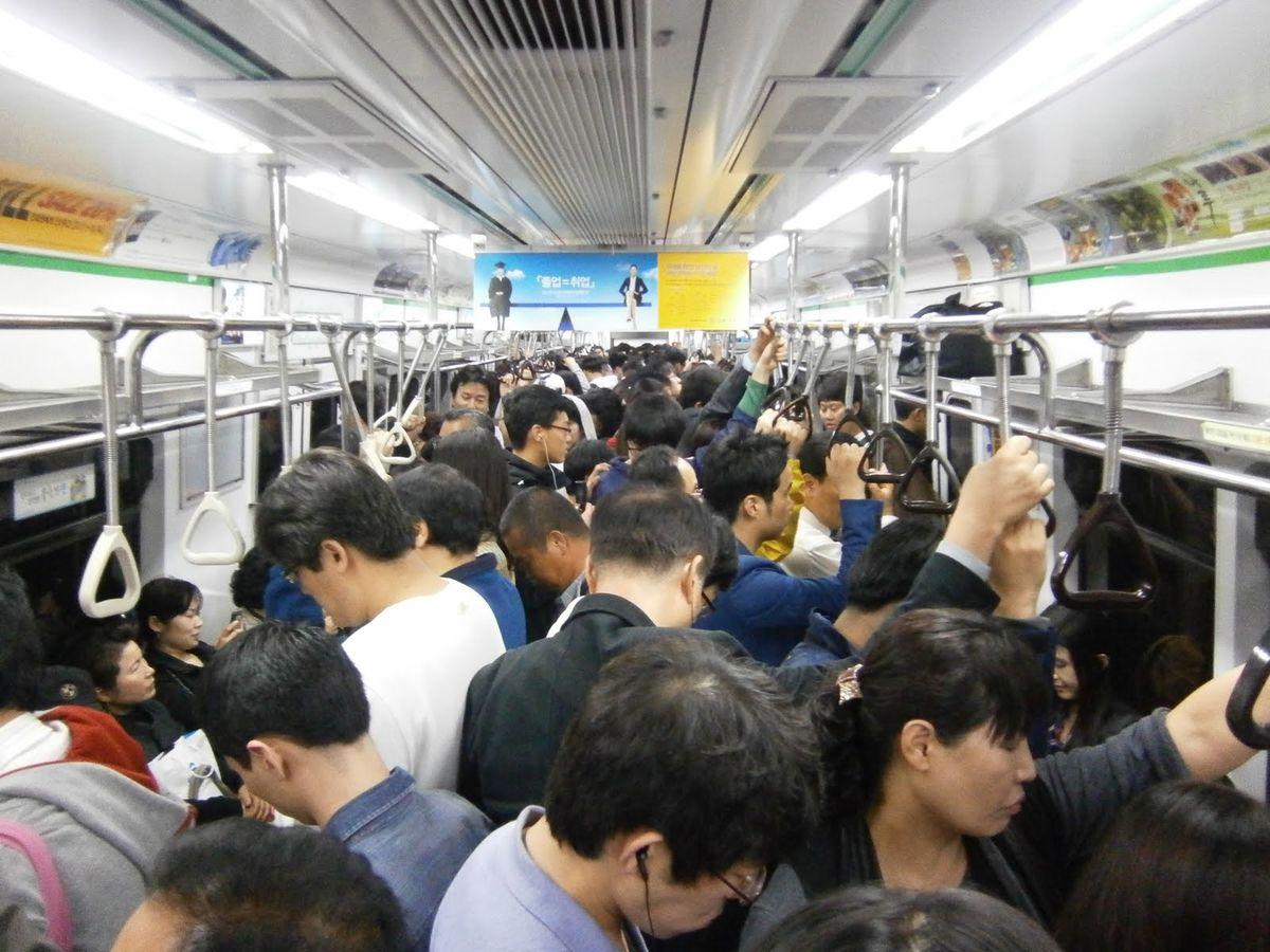 【西山の日常】今日も濃い1日でした。電車男には、慣れないみたいです。